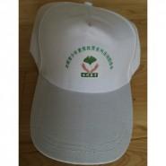 批发定做广告帽棒球帽 团体促销旅行高尔夫球太阳帽 可印制logo